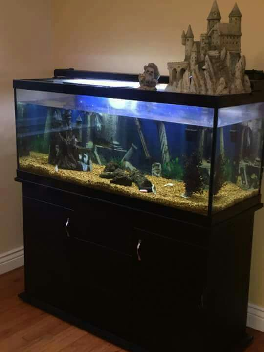 Letgo 75 gallon fish tank in rouse ky for Snap on fish tank