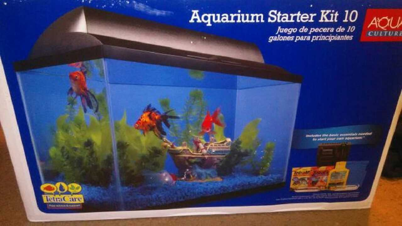 Fish tank games accessories mermaid fish tank nemo for Fish tank game