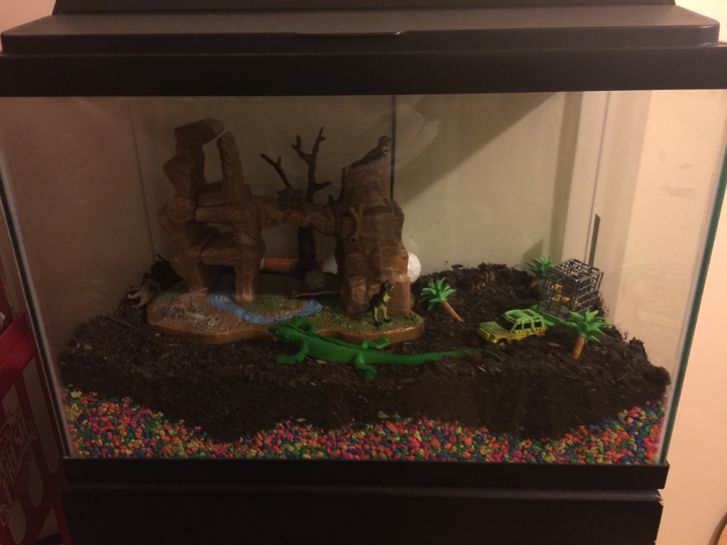 Letgo 15 gallons fish tank in passaic nj for What do you need for a fish tank