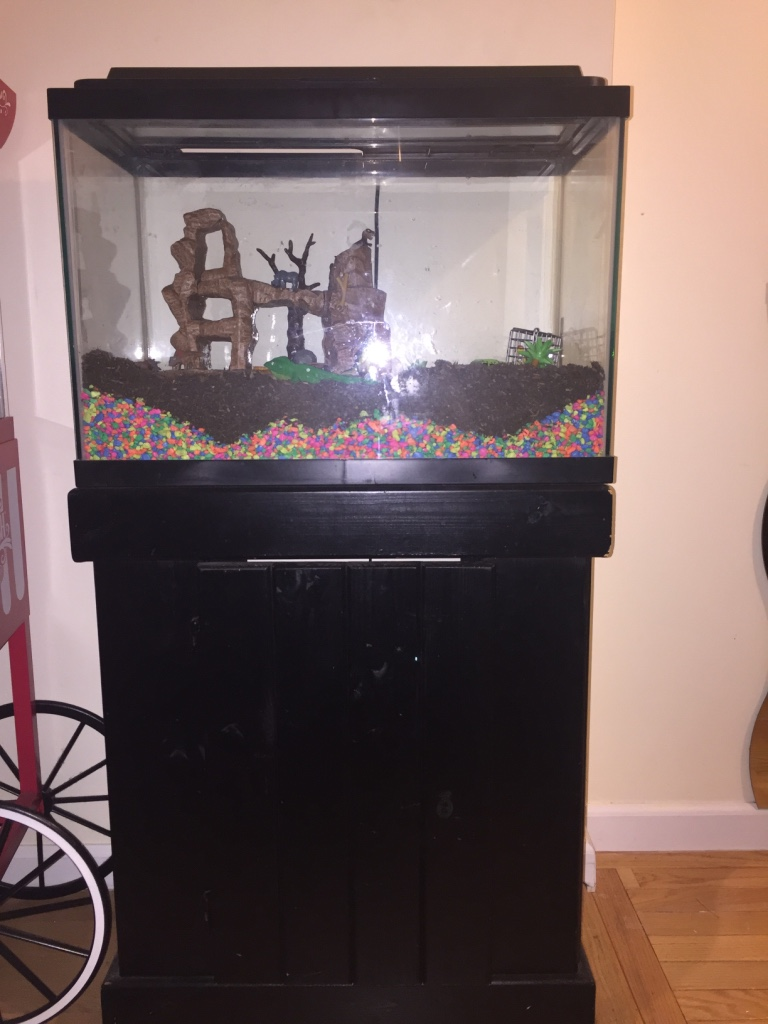 Letgo 15 gallons fish tank in passaic nj for 15 gallon fish tank stand