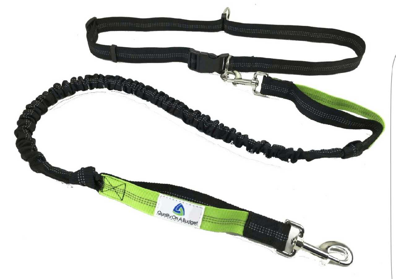 Hands Free Dog Leash For Hiking