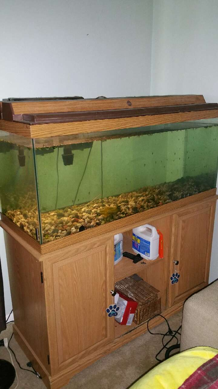 Letgo 75 gallon fish tank in oak forest il for Snap on fish tank