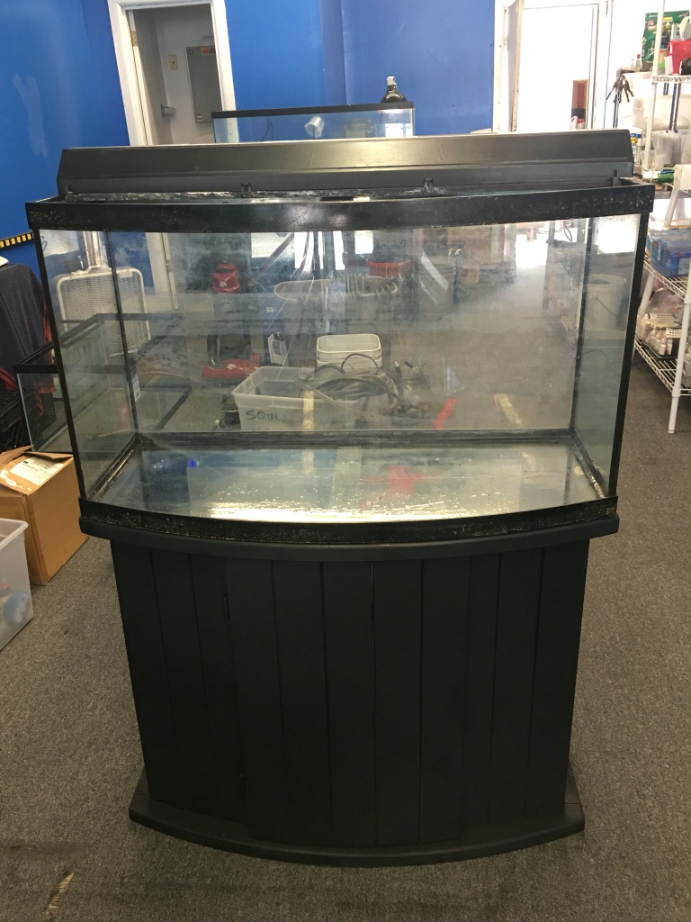 Letgo 45 gallon bow front aquarium fish t in lamott pa for Fish tank and stand combo