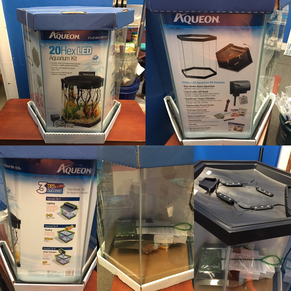 Letgo 20 gallon brand new hexagon aquariu in lamott pa for 20 gallon fish tank kit