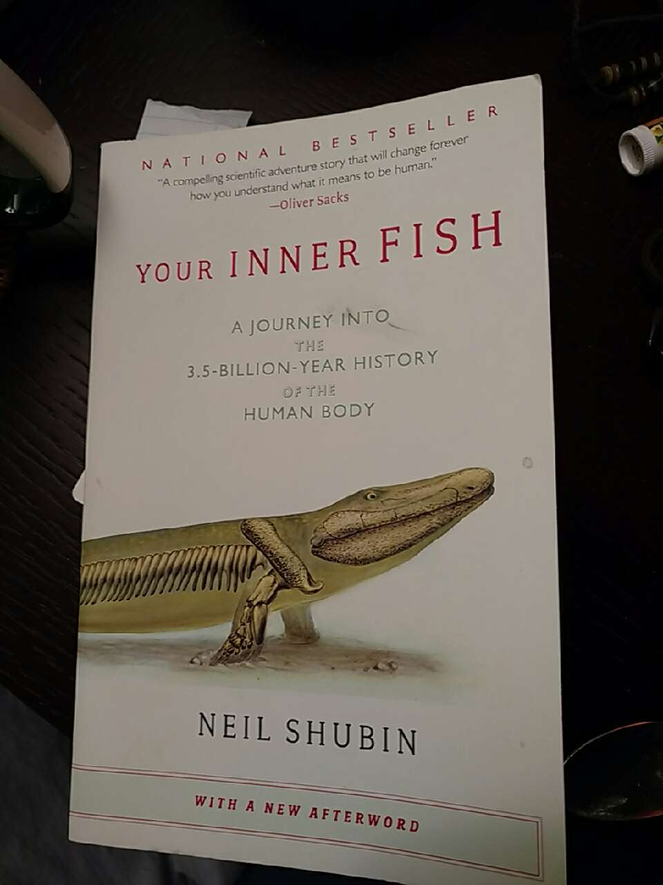 Letgo your inner fish by neil sh in hamilton square nj for Your inner fish book