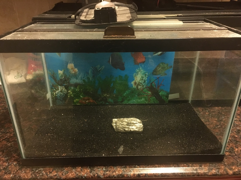 Letgo fish tank with hood and light in harrison nj for Fish tank hoods